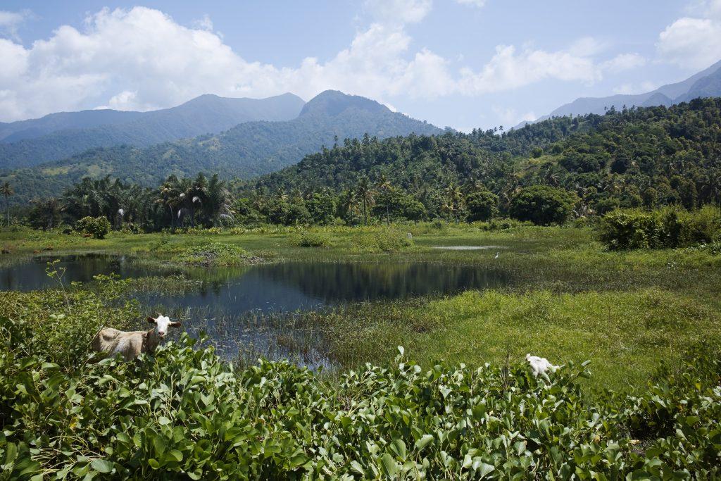 Landscape close to Pomoni, Anjouan