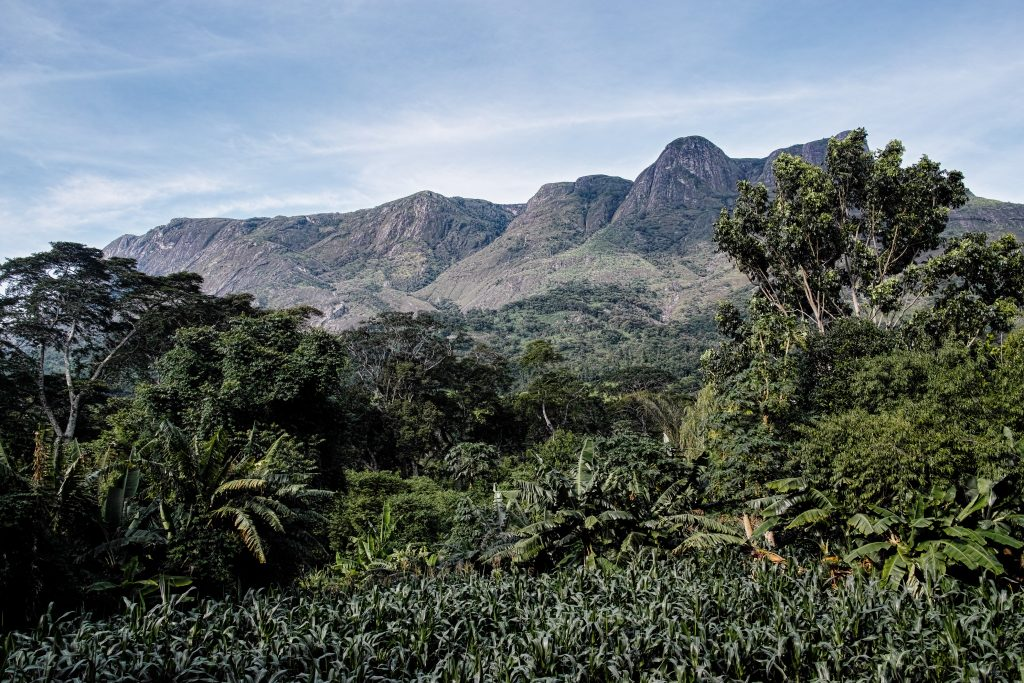The Mulanje Massif, an 3000 meter high inselberg in southern Malawi