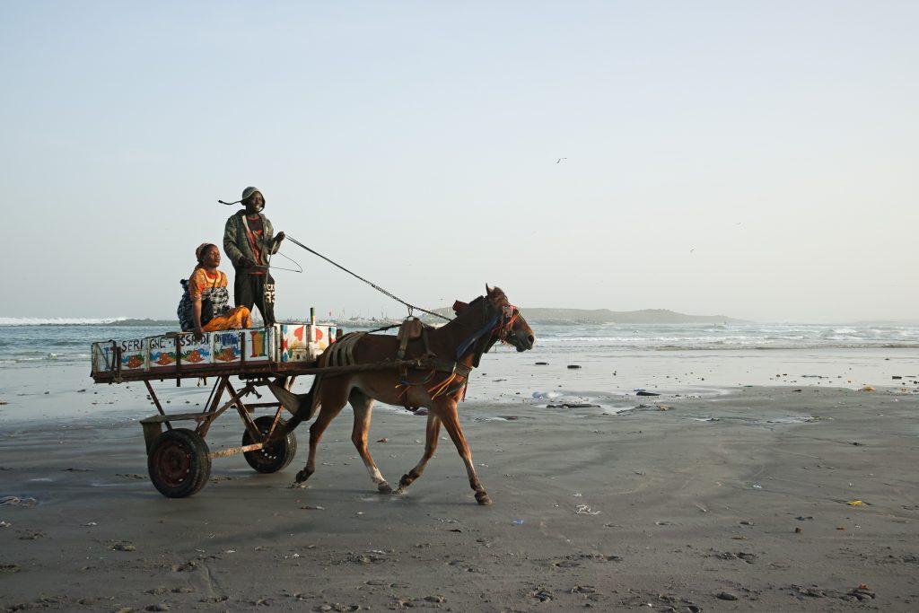 Horse cart in Yoff, Dakar