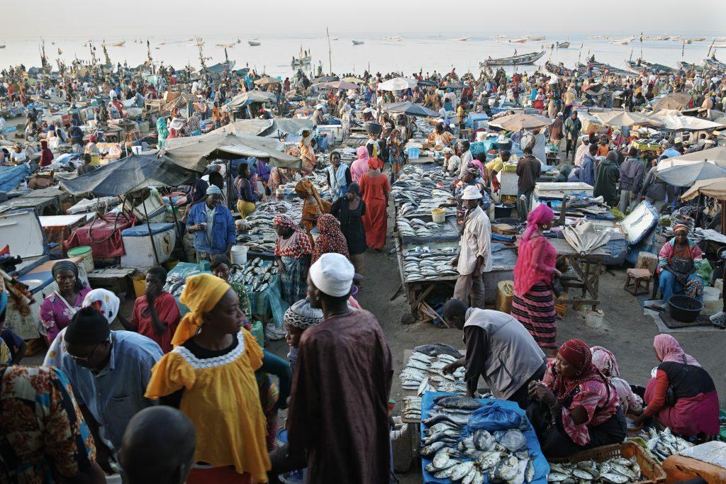 The impressive fish market in Mbour at sunrise