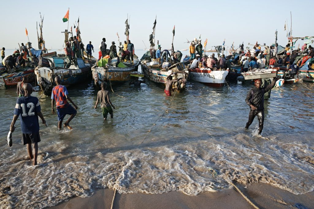 Unloading boats at the Mbour fish market