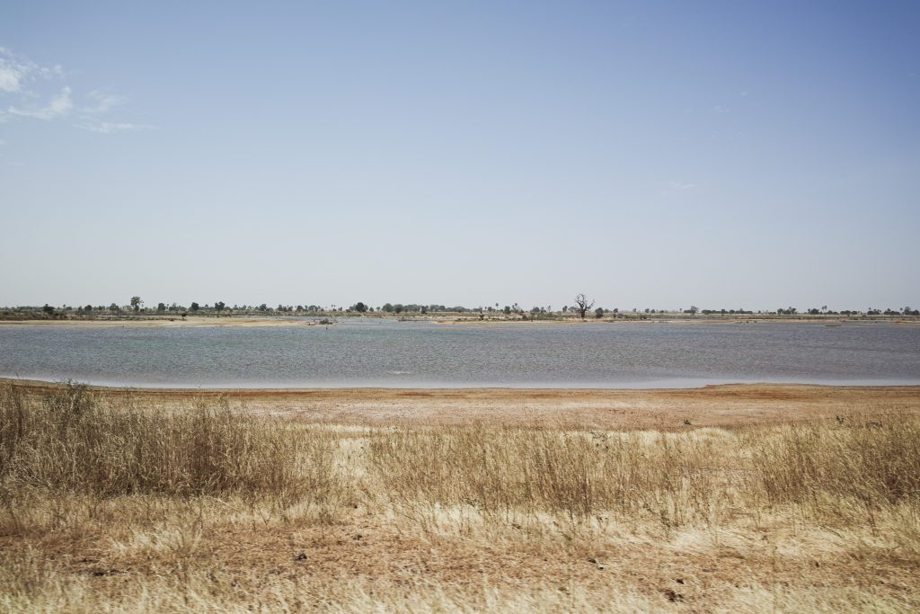 Saloum Delta landscape